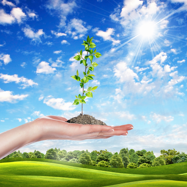 environmentalcommitments